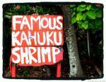famous kahuku shrimp sign