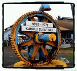 sugar mill wheel