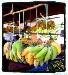 hanging bananas