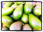 hawaiian avocados