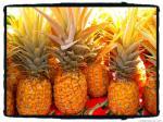 golden pineapples