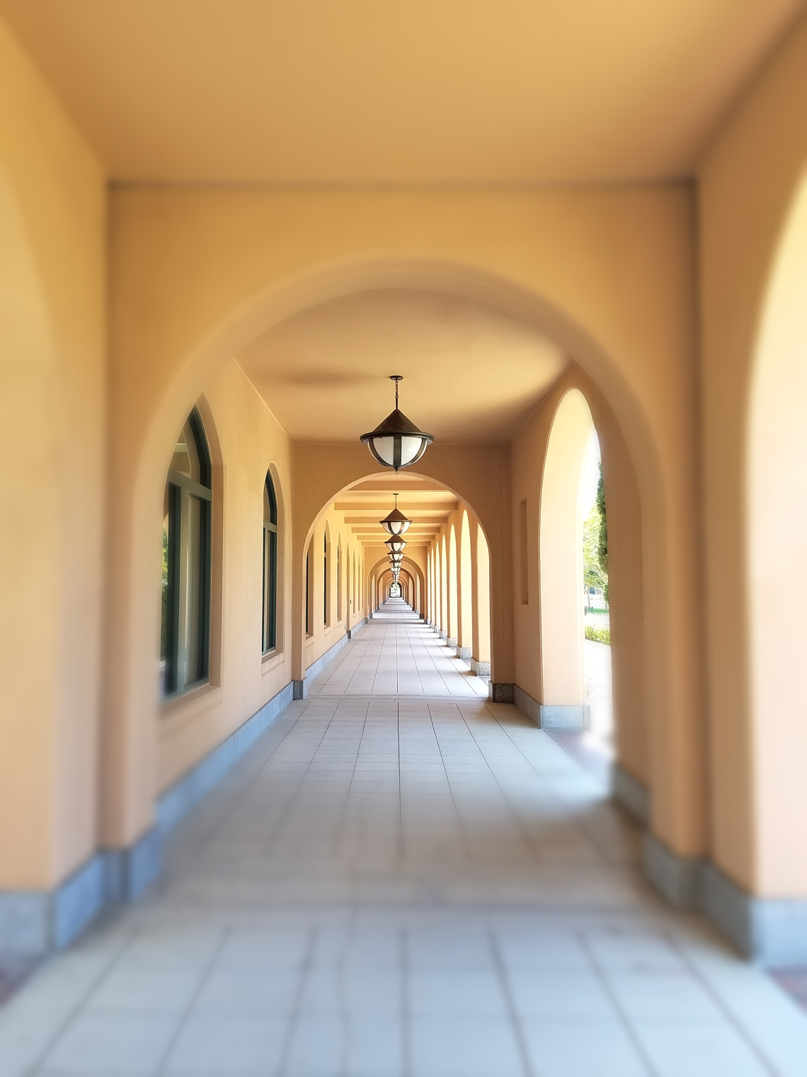 Archways at TSDF